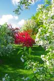 Spring in Des Moines