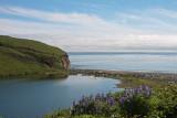 Alaska June 2010