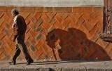 Shadow San Miguel Basketweave Wall