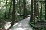 IMG_2680-4 Hommage à Suzanne - Parc de la nature - Mont-Saint-Hilaire - Québec