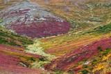 Paysages - Quand la nature se met à peindre / Landscapes - When Nature Starts Painting 2