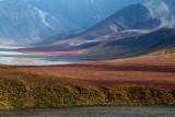 Paysages - Un goût de revenez-y /Landscapes -  A taste of come back to it (Google Translate)