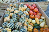 Load of Gourds
