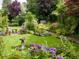 Garden 24 July 2009