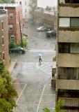 Boston Rain #4