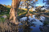 Mannum Falls Reflections