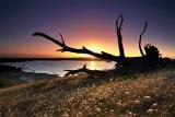 Narrung Sunset