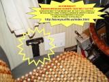 WINDOW BREAKING /SEAT BELT CUTTING SAFETY HAMMER