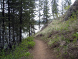 Perfect trail running.