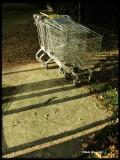 missing carts..
