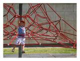 In The Cobweb - IMG_0130