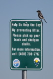 Birding Sites