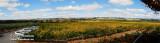 Mc Laren Vale Panorama
