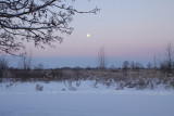 winter field with moon