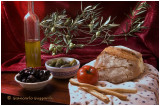 Olive tree, ancient and precious gift