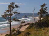 Oregon Coast 2009