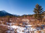 Early winter in Bow Valley