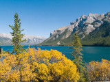 Lake Minnewanka Autumn