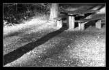 seats shadow.jpg