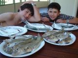 Damien__Alex____plates_of_fish.jpg