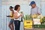 Flores que no falten para un pais alegre (La Habana)