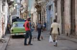 La calle, un gran teatro humano y animal (La Habana)