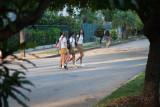 Camino de la escuela. Barrio de Miramar.  La Habana