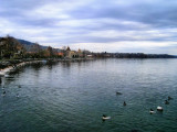 What about a walk along the lake?