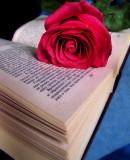 Vronsky's rose...