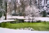 The snowy pond