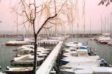 Boats in hibernation...