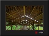 Bamboo Gallery