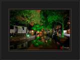 Green Light Along the River