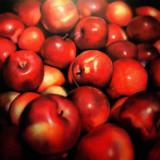 Winter apples, 2009