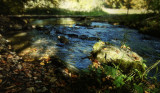 stone by a brook (idyll`s end)