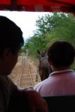 cuzama burro ride.JPG