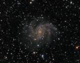 NGC 6946 (Arp 29 ; Caldwell 12)