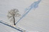 2009-01-10_273.jpg