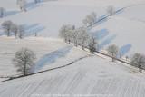 2009-01-10_303.jpg