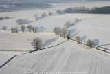 2009-01-10_304.jpg
