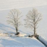 2009-01-10_315.jpg