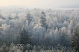 2009-01-10_329.jpg