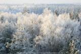 2009-01-10_333.jpg