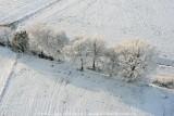 2009-01-10_360.jpg
