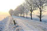 2009-01-10_416.jpg