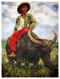 Filipino Farmer