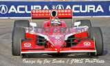 St Petersburg, Florida IRL - Indy Pro - ALMS 04/04-06/08