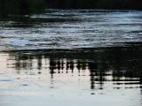 plate rivière