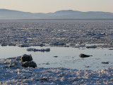 marée haute sur glace
