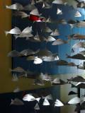 mobile en poissons d'argent